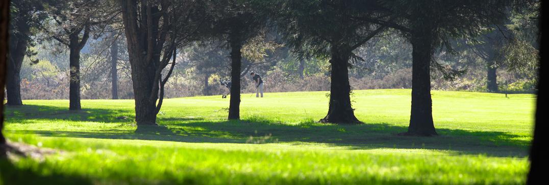 Le golf de Brest Iroise